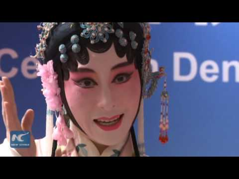 Chinese Cultural Centre opens in The Hague