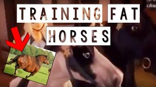 Gambar cover SSO vlog 1 - Training and fat horses