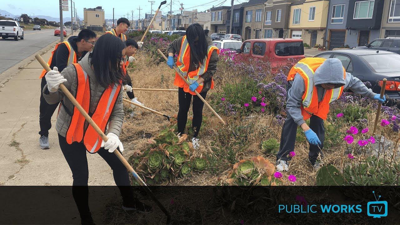 Learn about our longest-running volunteer cleanup program - EP.0003