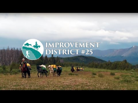 Improvement District #25