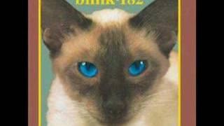Blink 182 - Strings Cheshire Cat version lyrics