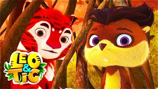 LEO and TIG 🦁 NEW 🐯 Episode 16 - Little Feat ❤️ Moolt Kids Toons Happy Bear