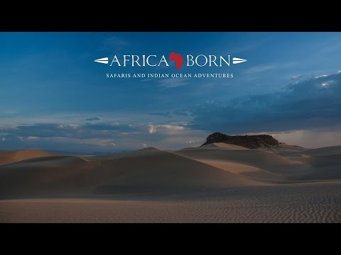 Africa Born Safaris