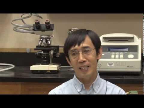 Ximing Guo - Genetic Advancement of Aquaculture