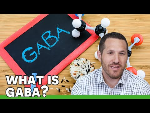 GABA | Ask the ND with Dr. Jeremy Wolf
