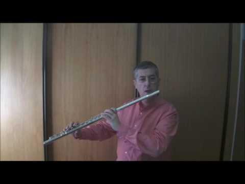 Vicente Martínez - Quijotesca para flauta sola