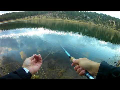 Fly Fishing In Ruidoso, New Mexico -Alto Lake