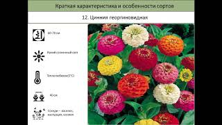 Школа  основ Зеленого строительства Ярославль 2018(, 2018-03-22T07:01:22.000Z)