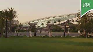 Build a greener tomorrow at Expo 2020