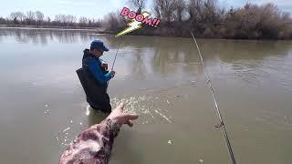 супер рыбалка в Казахстане ловля жереха на спининг с берега на реке закрытие весеннего сезона 2021