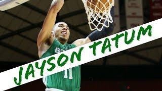 Jayson Tatum Highlights (2017) [HD]