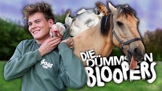 DIE DÜMMSTEN BLOOPERS mit allen Tieren | Joey's Jungle