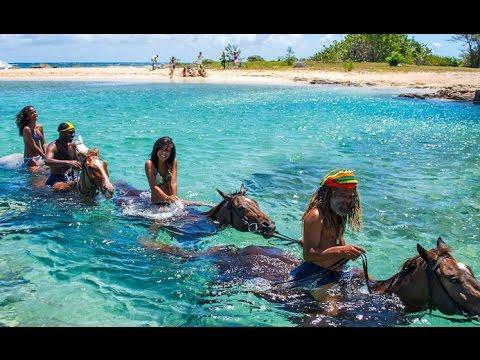 HD Jamaika - Die wilde Schöne der Karibik Natur & Kultur Doku