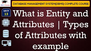 Introduction to Entity, Attribute, Types of Attributes in DBMS