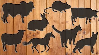 Wrong Wooden Slot Domestic Animals || Learn Animal Names and Sounds for Kids || Baby Learn and Fun