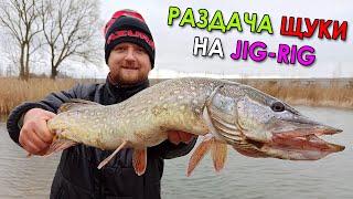 САМЫЕ ХИТРЫЕ ЦВЕТА - УБИЙЦЫ ЩУКИ! Рыбалка на щуку 2021! Ловля щуки на джиг-риг на спиннинг
