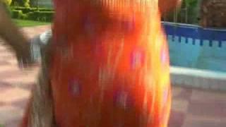 Orange Pure Satin Silk Bandhej Saree with Blouse