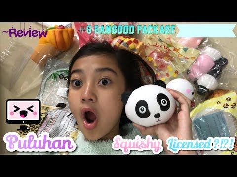 PULUHAN SQUISHY LICENSED ?!?! #6 Review Package from bangood.com !!! | Friendship DIY