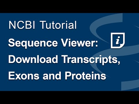 Sequence Viewer: Download Transcripts, Exons and Proteins