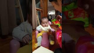 6개월 아기 청란 닭고기 이유식