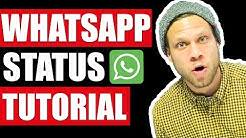 🚀 WhatsApp Status - Tutorial 🚀 | #FragDenDan