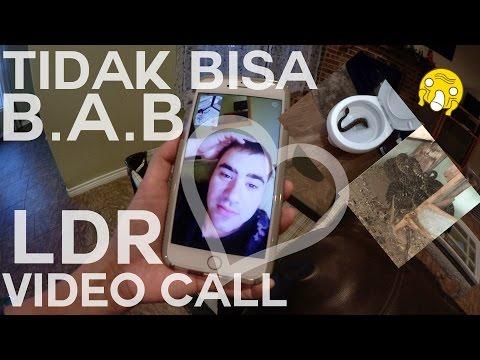LDR CALL | ULAR DI DALAM WC | ANJING & SERIGALA BERKELAHI