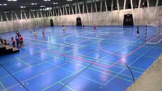 BSC Old Boys Basel U11 - SC Steinen Basel Ea 10.01.2015
