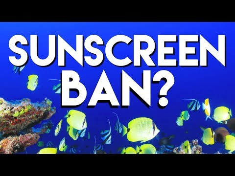 Hawaii sunscreen ban: what a dermatologist thinks| Dr Dray 🌞