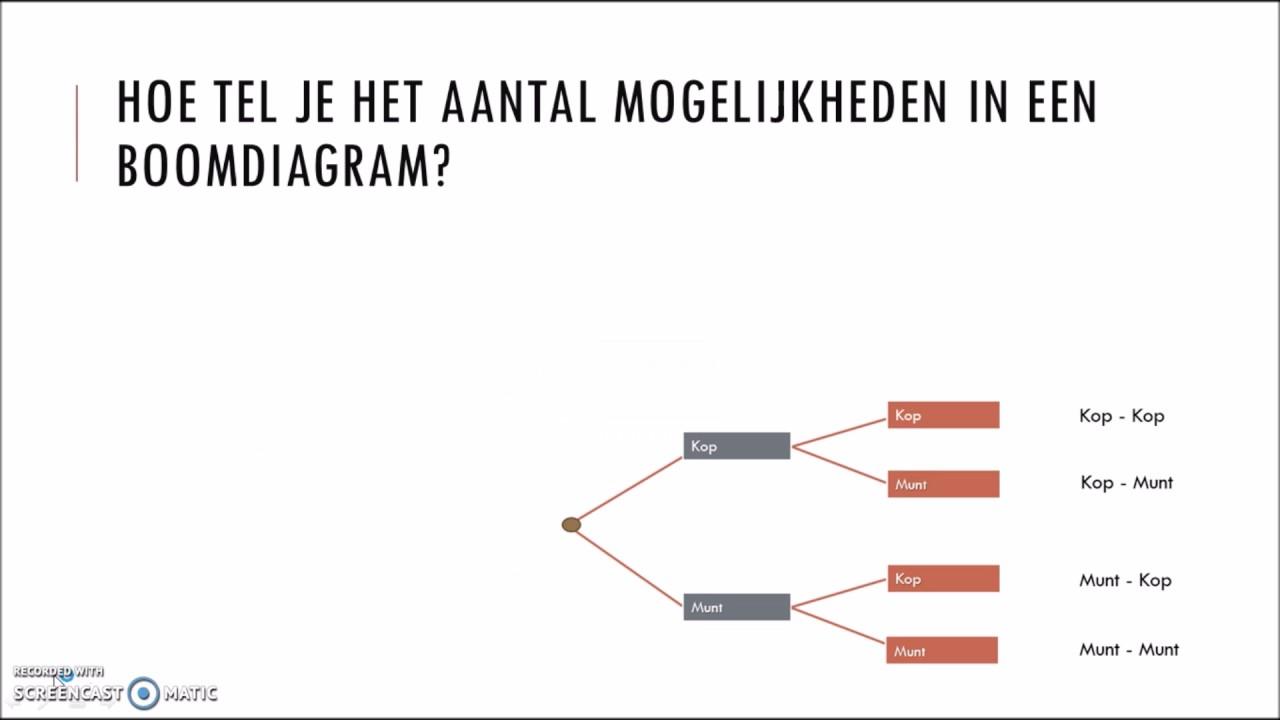 Uitleg Boomdiagram