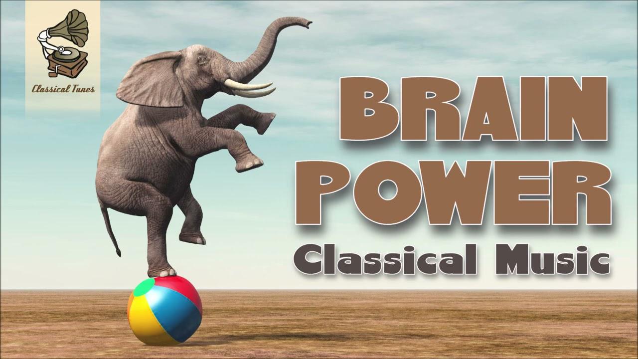 5 Hours Brain Power Classical Music
