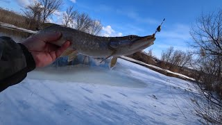 Рыбалка на спиннинг удачное открытье 2021 как поймать щуку на малой реке
