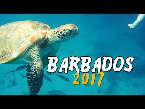 BARBADOS GoPro Holiday Travel video - JULY 2017