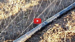 видео Автоматическая система для культивации растений