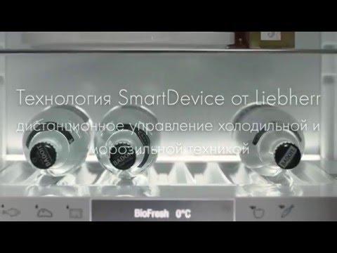 Ремонт холодильников либхер Технология Принцип охлаждения