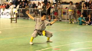 Repeat youtube video Shaolin Taizu Chang Quan