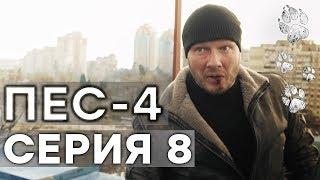 Сериал ПЕС - 4 сезон - 8 серия - ВСЕ СЕРИИ смотреть онлайн | СЕРИАЛЫ ICTV