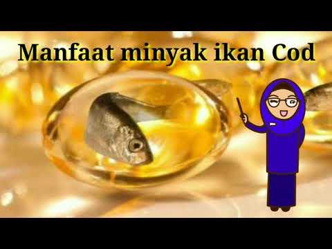 Minyak Hati Ikan Cod (Cod Liver Oil)