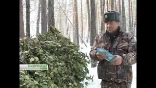 видео: Охота на браконьеров