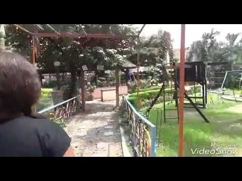What I discovered about Nigeria zoo 3yrs ago (So funny)