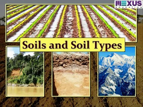 Soils and soil types social science iken school for Information about different types of soil