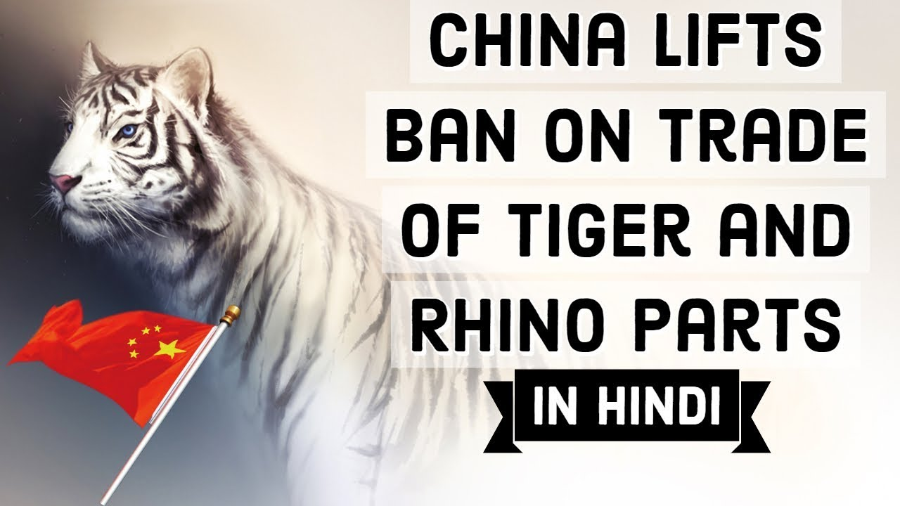 China lifts ban on Tiger & Rhino parts for medicine, Big blow for wildlife, Current Affairs 2018