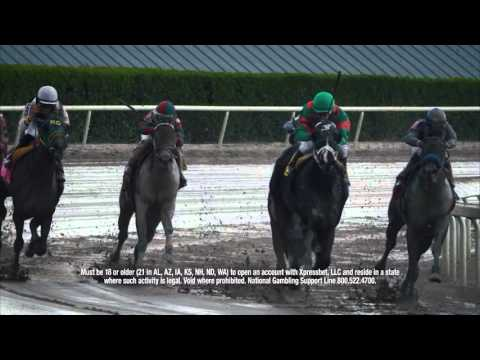Gulfstream Park Replay Show | April 22, 2016