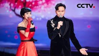 [放歌新时代] 跨越时空的郭靖与黄蓉,米雪、张智霖唱响《铁血丹心》,用歌声绘就了一幅荡气回肠的历史画卷!  CCTV综艺