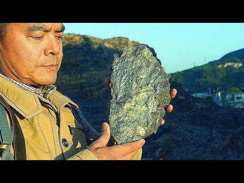 10 INCREDIBLE New Fossil Finds