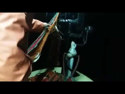 Selimpaşa istavrit avı