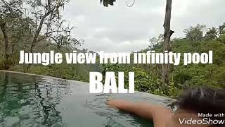 BALI Jungle View From Infinity Pool