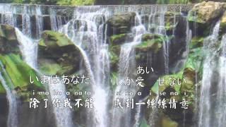 鄧麗君-我只在乎你(任時光在身邊流逝) 中文日文羅馬音歌詞《Karaoke》