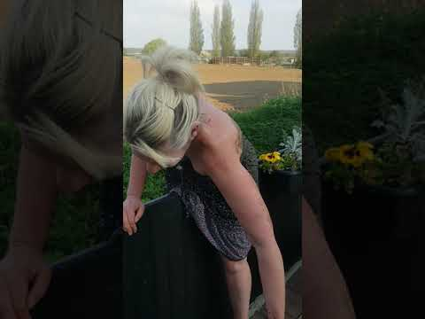 Girl in fence with no knickers!