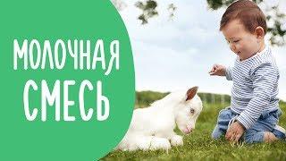 Как Правильно Выбрать Молочную Смесь | ТЕСТ: Мама и Еда | Family is...