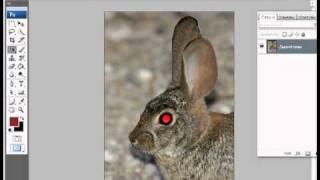 Уроки фотошопа CS3 - Красные глаза.avi(Часто приходится видеть на фотографиях красные глаза. Избавится от этого эффекта достаточно просто, этот..., 2011-07-16T23:23:21.000Z)